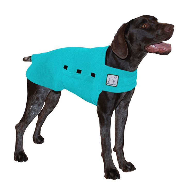Turquoise German Shorthaired Pointer GSP Dog Tummy Warmer, great for warmth, anxiety and laying with our dog rain coat. High performance material. Made in the USA.