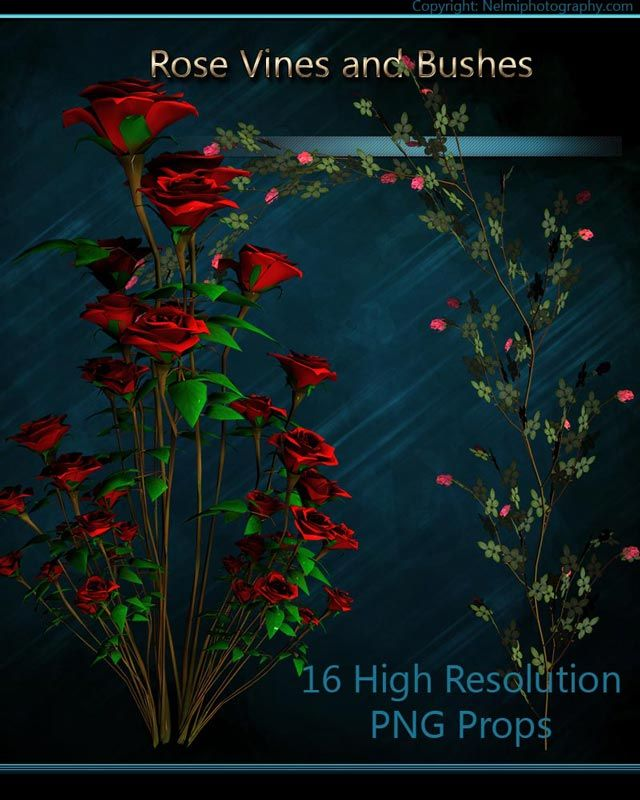 A collection of 16 High Resolution png props - Rose vines and bushes for your digital art and scrapbooking creations. #scrapbooking #digitalart #props #3dprops #roses