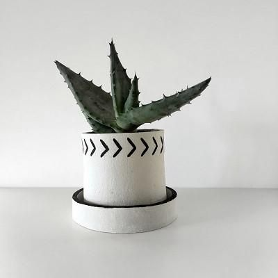 Arrow Planter // ANTLER and MOSS