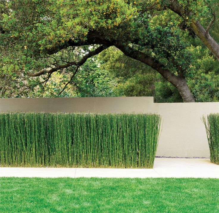 Brookvale Residence by Jim Jennings, Architect, Hillsborough, CA. 2.003.