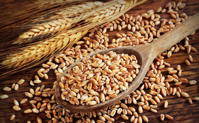 New Study Confirms Existence Of Non-Celiac Gluten Sensitivity | Care2 Causes