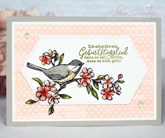 Frei Wie Ein Vogel Geburtstagskarte Elviras Stempelzimmer Geburtstagskarte Karten Kartenideen