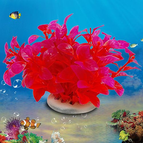 >> Click to Buy << Plastic Fish Tank Artificial Plant Aquarium Ceramic Base Fake Water Grass Store 243 #Affiliate