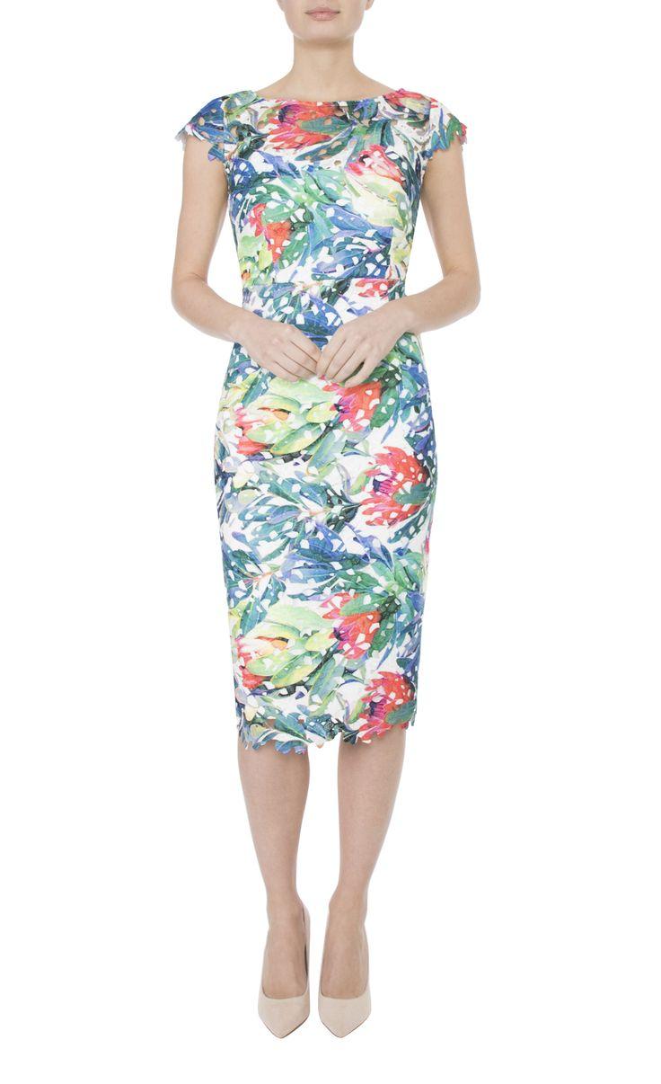 Occasion Wear   Botanical Dress