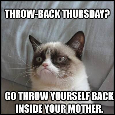 Grumpy Cat Throwback Thursday   Funny Memes