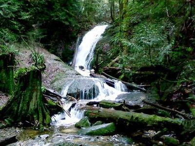 Coal Creek Falls. Roundtrip: 2.5 Miles; Elevation Gain 350 Ft. Highest Point: 1000 Ft.