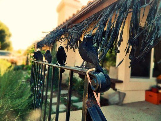 10 ideas for decorating your porch this halloween - Cool Halloween Decorations You Can Make