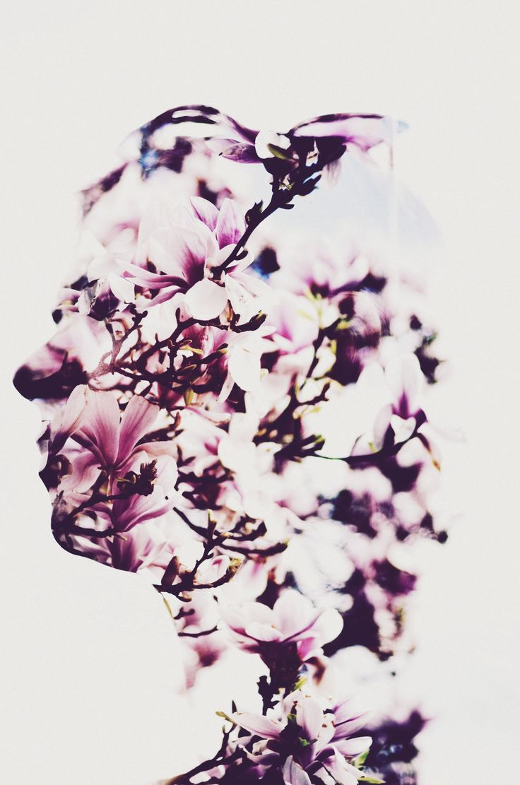 Magnolia Face Special Work Multiple Exposure! ralFinophotography