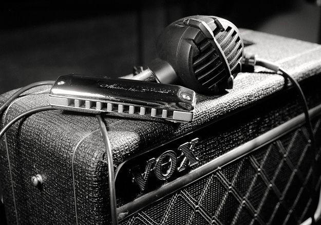 Armónica y amplificador