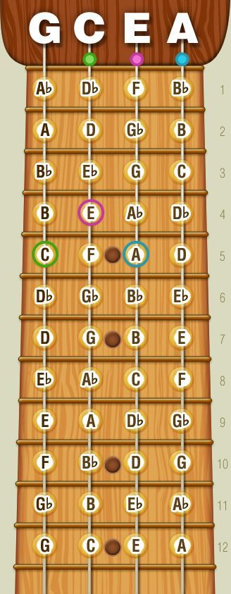 """""""Real"""" Notes On Your Ukulele Fretboard (Diagram) I'm still strumming chords (badly), but I'm looking forward to reading music – and I'd prefer skipping tablatures altogether as these seem, well,..."""