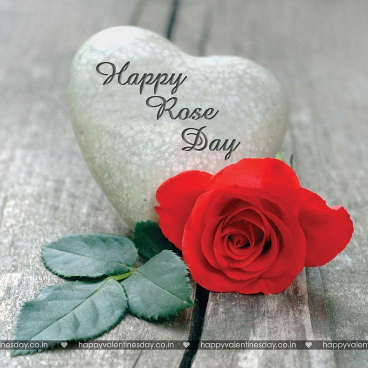 wedding anniversary wishes shayari in hindi%0A Rose Day  happy valentines day sms messages  http   www happyvalentinesday