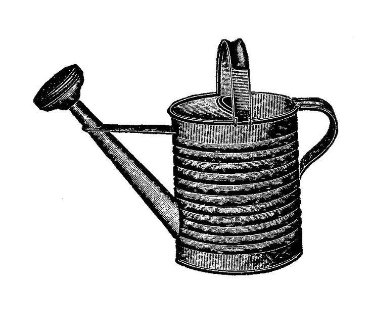 Antique Images: Free Graphic Design: Vintage Black And White Illustration  Of Garden Watering Can
