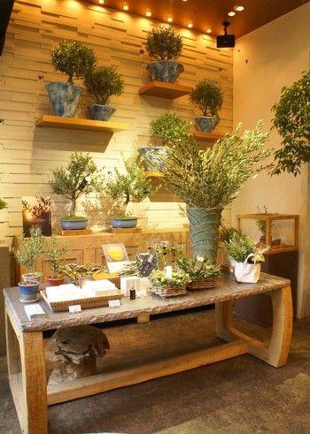FUGA GREEN<フーガ グリーン>は、ご自宅や庭など、観葉植物のコーディネートもしてくれます。 新居へのギフトにもぴったりですね。