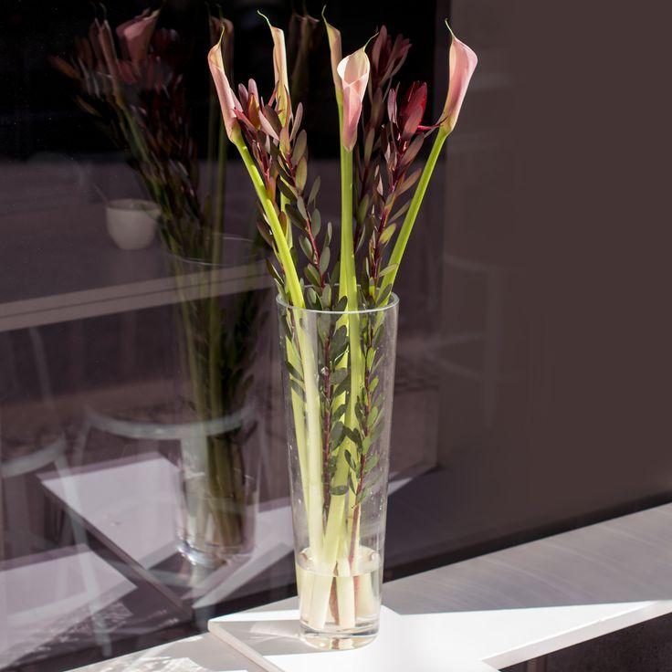 215 best blumen der woche images on pinterest. Black Bedroom Furniture Sets. Home Design Ideas