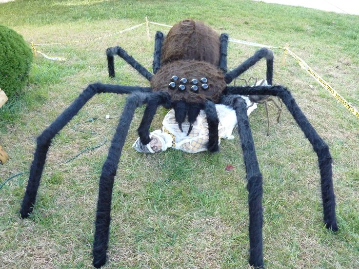 homemade giant spider prop made in 2010 - Giant Halloween Spider