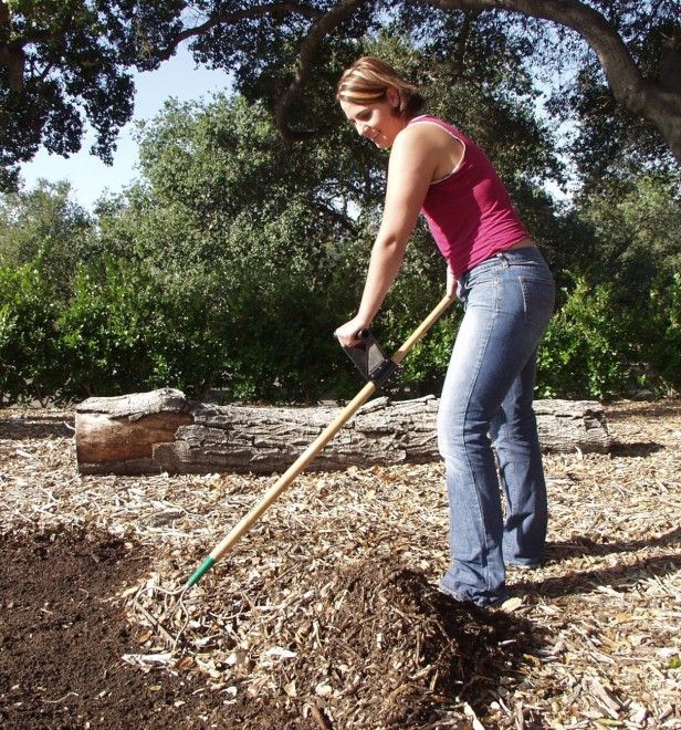 17 best images about garden disabled gardener aids on for Gardening tools for disabled