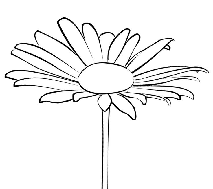Zinnia Stencil Printable 141 best images about ...