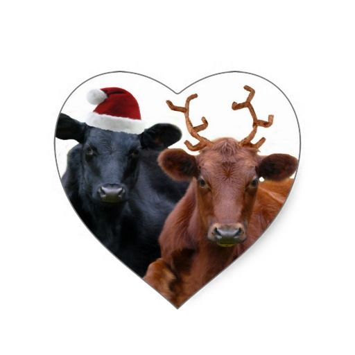 Christmas Holiday Cows In Santa Hat And Antlers Heart