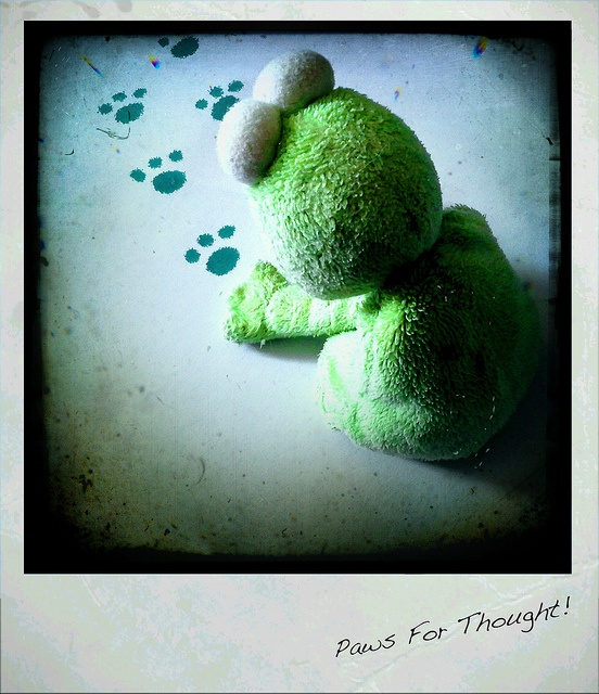Paws For Thought! by Lette Moloney, via Flickr