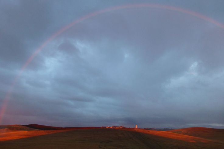 Can't beat the scenery of the Palouse like this rainbow over Pullman after a rainy Tuesday. Go Cougs!