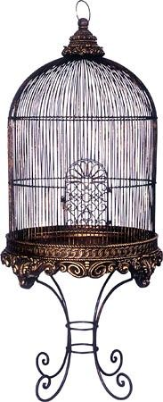 102 best images about birdcage couture on pinterest antiques victorian and birdcages. Black Bedroom Furniture Sets. Home Design Ideas
