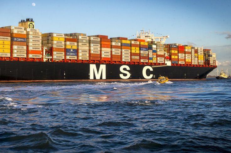 Bild zu MSC Oscar, Containerschiff