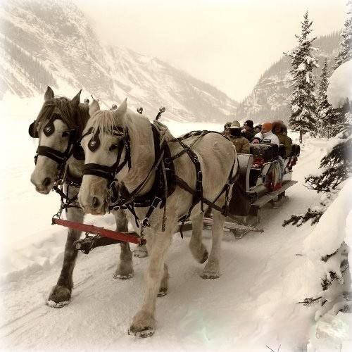 pin snow ride carriage - photo #36