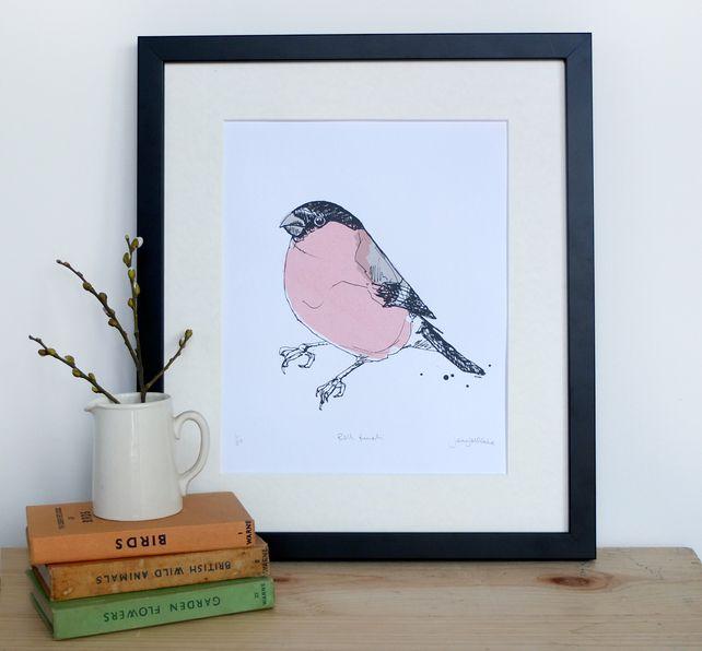Bullfinch screenprint limited edition of 20 by Jenny McCabe