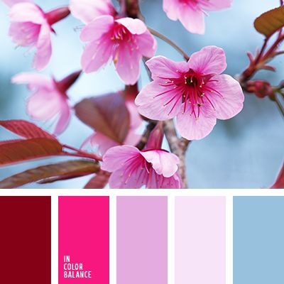 966 best combos images on pinterest combination colors Red and pink colour combination