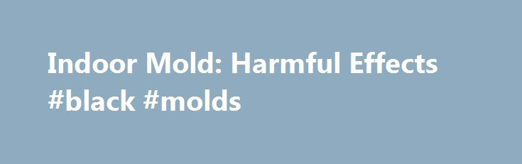 Indoor Mold: Harmful Effects #black #molds http://uganda.remmont.com/indoor-mold-harmful-effects-black-molds/  # The type and severity of health effects that result from molds exposure is widely variable among different locations, from person to person and over time. Although difficult to predict, exposure to molds growing indoors is most often associated with the following allergy symptoms: Nasal and sinus congestion Cough/sore throat Chest tightness Dyspnea (breathing difficulty) Asthma…