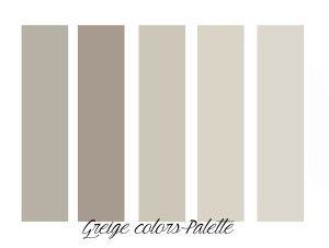 Tortora: il colore neutro di tendenza - TotalDesignTotalDesign
