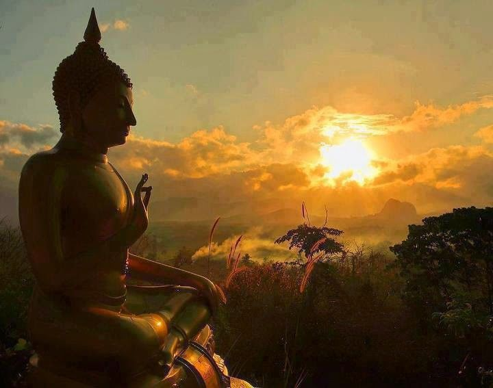 """"""" At this moment, is there anything lacking? Nirvana is right here now before our eyes. This place is the lotus land. This body now is the Buddha."""" ~ Hakuin Ekaku ♥ lis"""