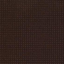 Color: 00707 Tree Bark In Savannah - EA024 Shaw ANSO Nylon Carpet Georgia Carpet Industries