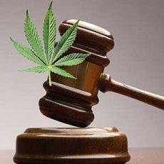 Marijuana Considered for Removal from Schedule I Status in Federal Court Case
