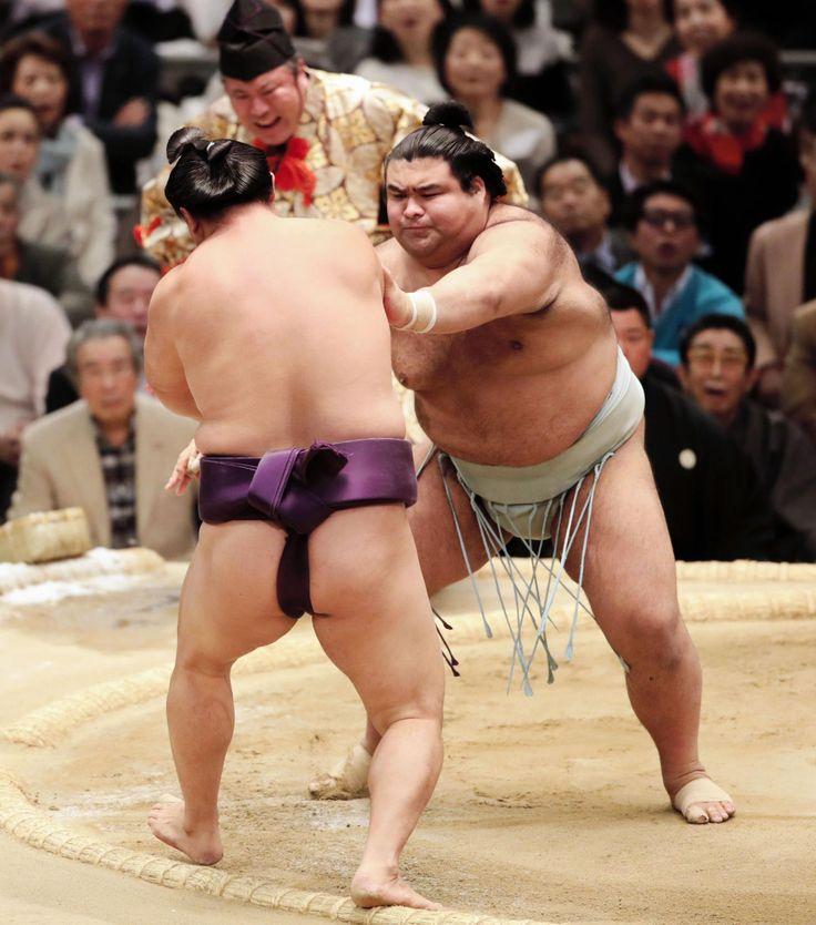 高安、万全の相撲で7戦全勝 立ち合いで蒼国来を吹っ飛ばす  デイリースポーツ #相撲