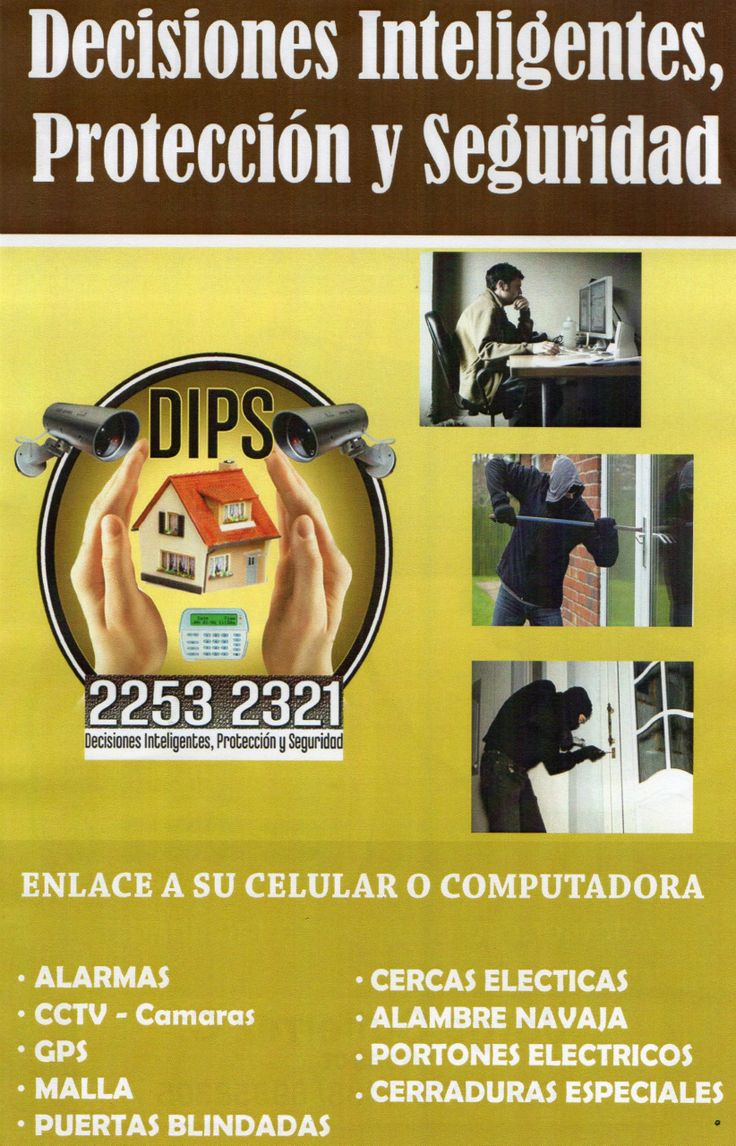 seguridad electronica DIPS