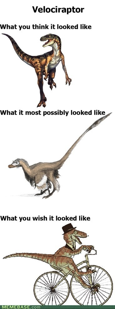 Google Image Result for http://chzmemebase.files.wordpress.com/2012/04/internet-memes-velociraptor.jpg