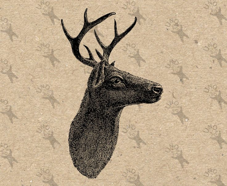 Deer antique image Instant Download Digital printable clipart graphic Burlap Fabric Transfer Iron On Pillows Totes Tea Towels  etc HQ 300dpi by UnoPrint on Etsy