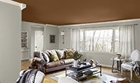 Link to Benjamin Moore Artisan 2013 Color Trends Palette      (mix of browns, grays, and neutrals)
