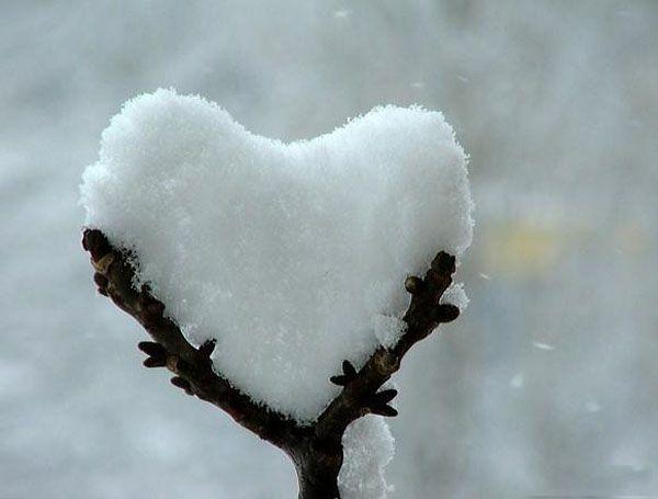 heart snow.