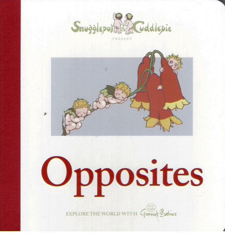 Snugglepot and Cuddlepie Present Opposites By May Gibbs