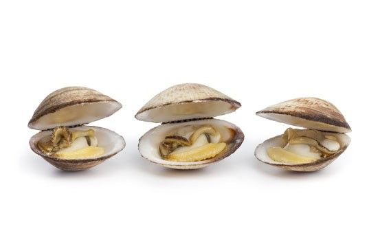 Molluschi. Potete sbizzarrirvi tra calamari, cozze, vongole, seppie, polpi, chiocciole, lumache di mare, ostriche. Assicuratevi prodotti freschi, privilegiate cotture rapide e serviteli con il loro liquido di cottura per non disperdere il rame. L'assenza delle spine rende questi alimenti adatti all'alimentazione di bambini e anziani. Insieme al rame apportano ferro e preziose proteine.