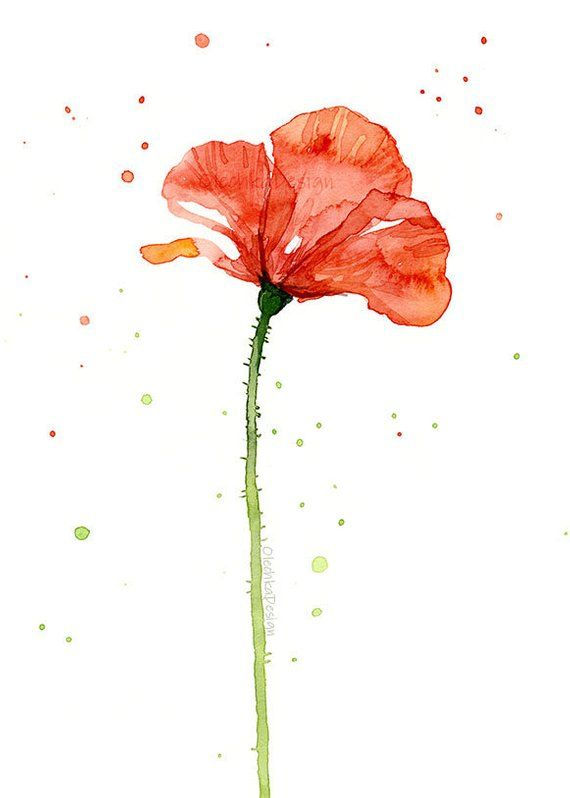 Poppy Flower Print Set Poppy Wall Art Red Poppy Prints Etsy Poppy Wall Art Floral Watercolor Paintings Watercolor Poppies