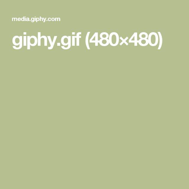 giphy.gif (480×480)