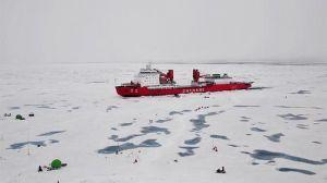 La acidificación del océano se extiende rápidamente en el océano Ártico