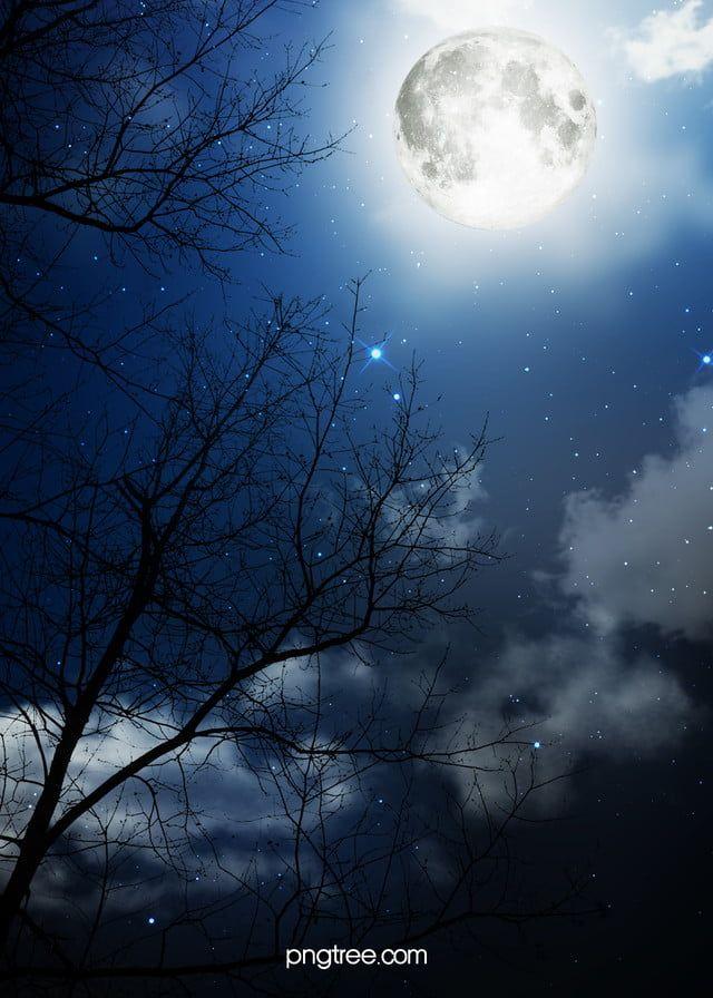 الليل واقعية خلاقة خلفية مظلمة Night Scenery Dark Backgrounds Scenery Background