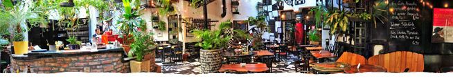 café restaurant dunkel-bunt im kunst haus wien  hundertwasser  lovely garden café like a secret hidden garden in the middle of town