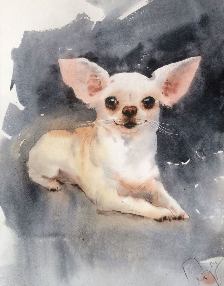 Grunevald IV / dog / watercolor / #Petrulenkov