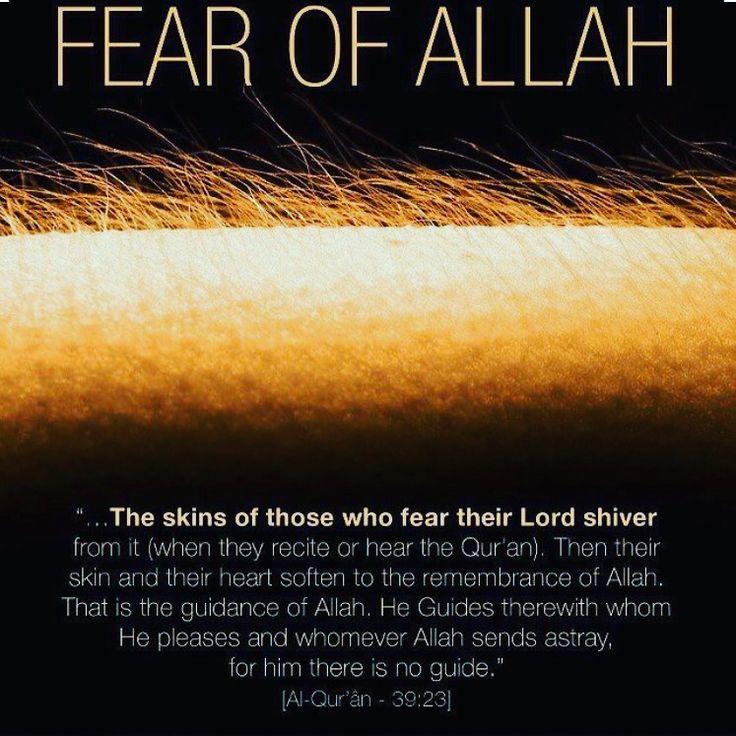 Akhirah Muhamed - Phone, Address, Background Report ...