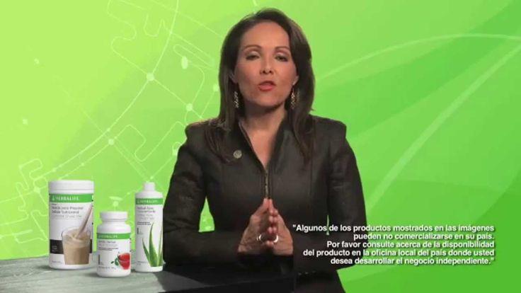 Entendiendo la Nutrición: Macro y Micronutrientes